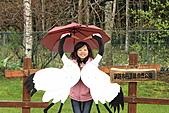 北海道蜜月:IMG_0438北海道蜜月