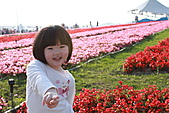 台北國際花卉博覽會:IMG_2709.JPG