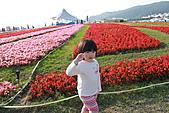 台北國際花卉博覽會:IMG_2715.JPG