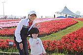 台北國際花卉博覽會:IMG_2703.JPG