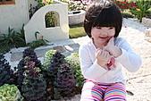 台北國際花卉博覽會:IMG_2609.JPG