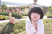 台北國際花卉博覽會:IMG_2614.JPG