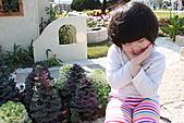 台北國際花卉博覽會:IMG_2610.JPG