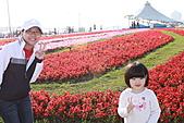 台北國際花卉博覽會:IMG_2704.JPG