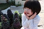 台北國際花卉博覽會:IMG_2611.JPG