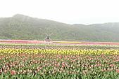 北海道蜜月:IMG_0593北海道蜜月