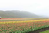 北海道蜜月:IMG_0595北海道蜜月