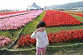 台北國際花卉博覽會:IMG_2713.JPG