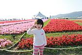 台北國際花卉博覽會:IMG_2714.JPG