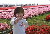 台北國際花卉博覽會:IMG_2707.JPG