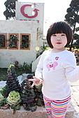 台北國際花卉博覽會:IMG_2606.JPG