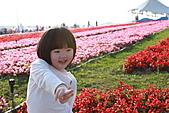 台北國際花卉博覽會:IMG_2708.JPG