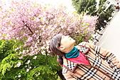 北海道蜜月:IMG_0799北海道蜜月
