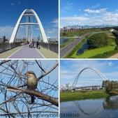 新月橋&新海人工溼地:新月橋&新海人工溼地