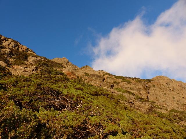 P1430255.JPG - 玉山三日遊之3:排雲山莊至玉山主峰