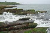 老梅石槽-藻礁奇觀:老梅石槽-藻礁奇觀4