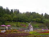 2011.10.08.09合歡山、清境農場:IMGP1330.JPG