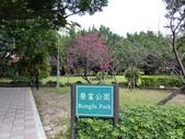 榮富公園~山櫻:榮富公園1-20150210.JPG