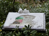 大崙頭山賞雪趣2016.01.24:P1390716.JPG