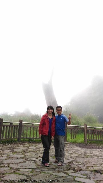 P_20160911_131425.jpg - 塔塔加夫妻樹