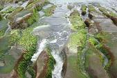 老梅石槽-藻礁奇觀:老梅石槽-藻礁奇觀7