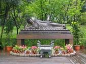 緣道觀音廟:IMGP1893.JPG