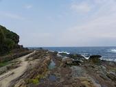 鼻頭角濱海:鼻頭角濱海20100425_71.JPG