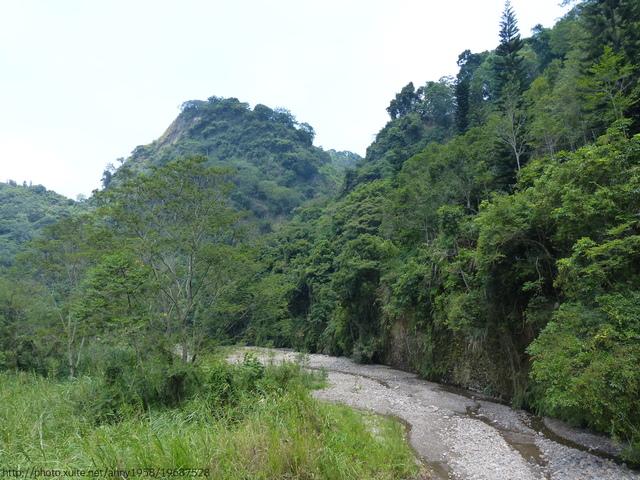 P1380893.JPG - 桐林森林生態園區