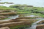老梅石槽-藻礁奇觀:老梅石槽-藻礁奇觀16