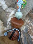 種子飾品:花木魚果、后大埔石櫟種子吊飾