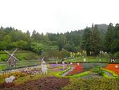 2011.10.08.09合歡山、清境農場:IMGP1328.JPG