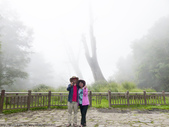 塔塔加遊憩區漫遊:塔塔加遊憩區漫遊