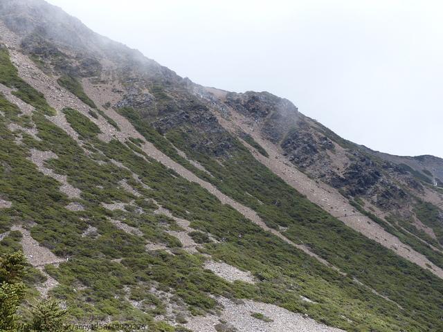 P1430173.JPG - 玉山三日遊之3:排雲山莊至玉山主峰