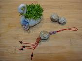 種子飾品:DSC01335.JPG