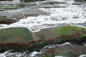 老梅石槽-藻礁奇觀:老梅石槽-藻礁奇觀5