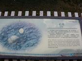 旅遊:IMGP9621.JPG