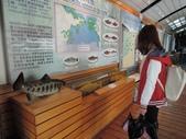 台灣櫻花鉤吻鮭生態中心:台灣櫻花鉤吻鮭生態中心3-20150301.JPG