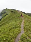 2011.10.08.09合歡山、清境農場:IMGP0823.JPG