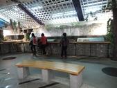 台灣櫻花鉤吻鮭生態中心:台灣櫻花鉤吻鮭生態中心10-20150301.JPG