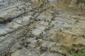 和平島-地質奇觀:DSC05410.JPG