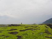 萊萊地質區&萊萊四角窟&三貂角燈塔:IMGP1644.JPG