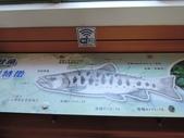台灣櫻花鉤吻鮭生態中心:台灣櫻花鉤吻鮭生態中心6-20150301.JPG