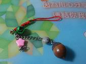 種子飾品:DSC09819.JPG