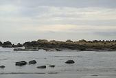 和平島-地質奇觀:DSC05216.JPG