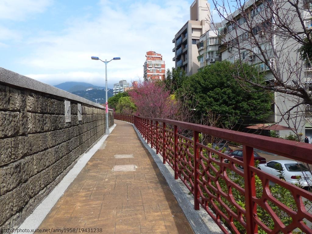 磺溪彩虹健康步道~山櫻:磺溪19-20150210.JPG
