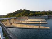 賞楓:鯉魚潭水庫IMGP3522.JPG
