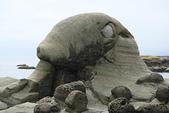 和平島-地質奇觀:DSC05340.JPG