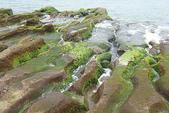 老梅石槽-藻礁奇觀:老梅石槽-藻礁奇觀6