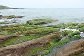 老梅石槽-藻礁奇觀:老梅石槽-藻礁奇觀2