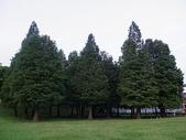 大湖公園~~~~黃昏隨意拍:IMGP1723.JPG